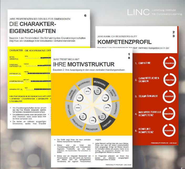 Personality Profiler Coaching